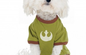 Star Wars Pet Friendly Party Announced at West Hollywood Petco