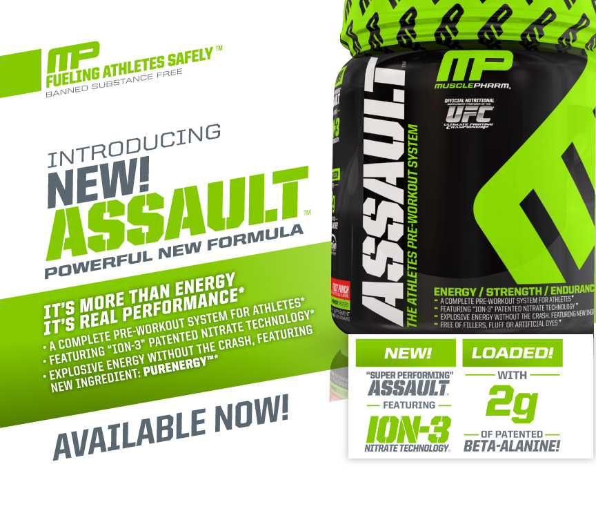 assault2013_productpage_web_v2_01
