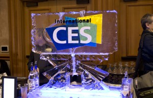 The 2014 International CES in Images