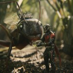 ant-man-feeding-ant
