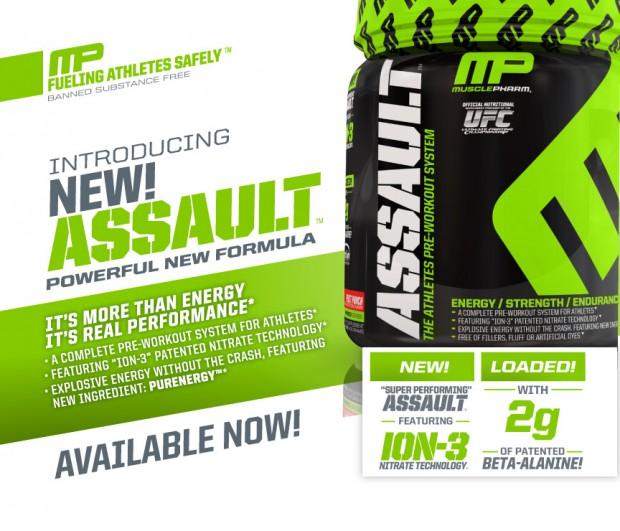 assault2013_productpage_web_v2_01