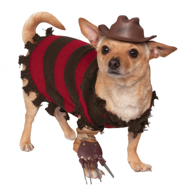 Rubies Freddy Krueger Dog Costume hi res